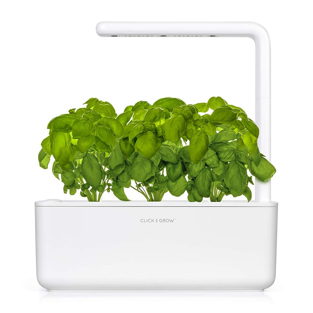 tabletop hydroponic planter with plants