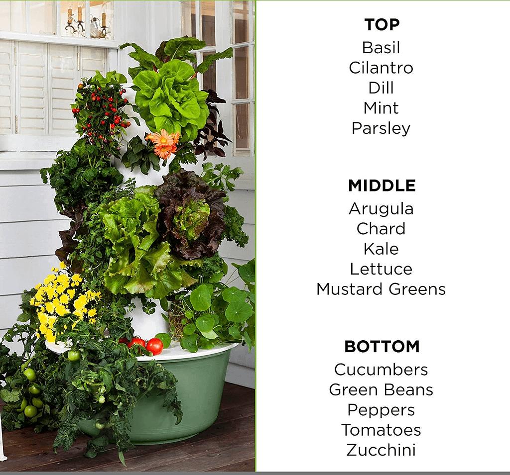 hydroponics gardening planter