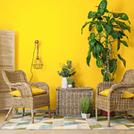 #trendalert: Rattan, Wicker & Cane: Why You Need These In Your Home