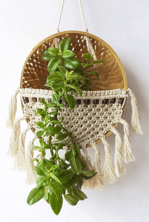 macrame and bamboo planter with a plant hung on a wall