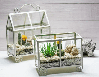 two cart shaped terrariums-one open and one closed showing aesthetically arranged plants