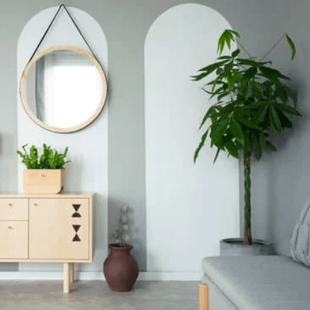 a room with sofa, mirror, cabinet and exotic plant money tree
