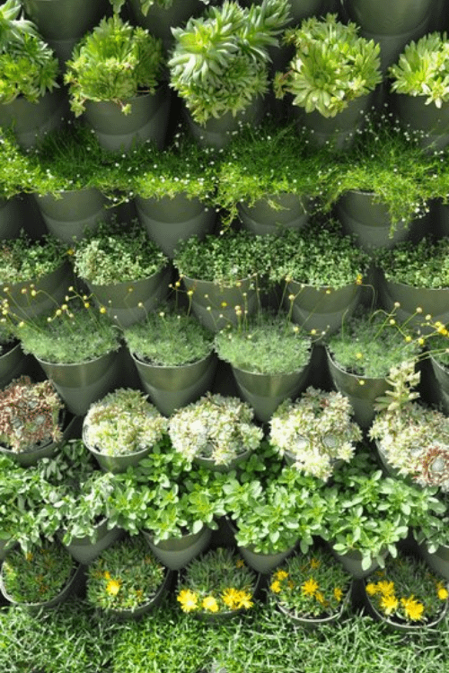 an example of vertical gardening with tiered planters
